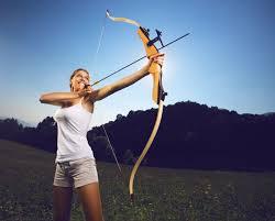 2meg archery