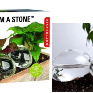 Glass Stone Gift
