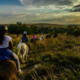 Harties-horse-trail-safaris-434.jpg