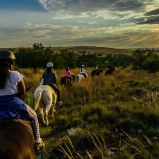 Harties-horse-trail-safaris-434