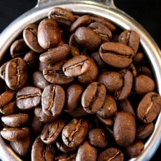 Coffee Barista Training Experience