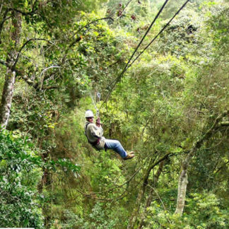 canopy tour tsitsikamma