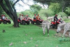 safari-4.jpg