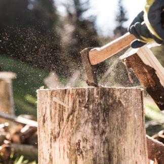 Lumberjack Games Experience